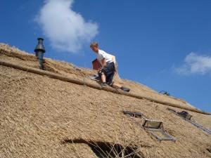 Herbert op het dak